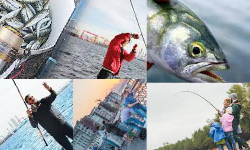 Balıkçılık Tutkusu ve Balık Avı